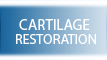 Cartilage Restoration - Michael Bahk MD - Orthopaedic Surgeon